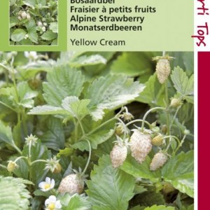 aardbei-yellow-cream_1324_1.jpg