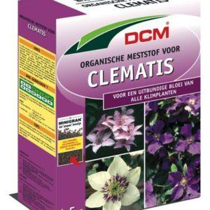 clematis_15kg_1000166.jpg