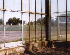 Pro Renovate roest verwijderen