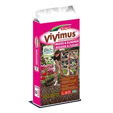 Vivimus Rozen 100050 www.nuyenstuinengroenshop.nl