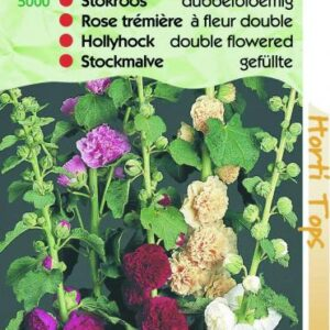 althaea-rosea-chaters_1993_1.jpg