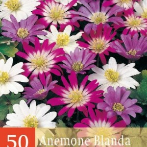 blanda-mix_600_1.jpg