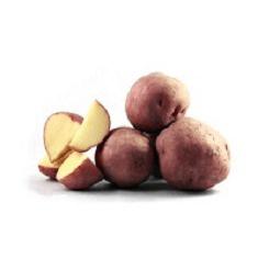 irene pootaardappelen