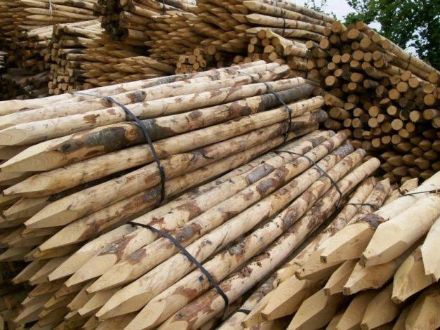 Palen kastanjehout 180 cm x 6 8 cm nuyens tuin en groenshop for Vijverfolie gamma